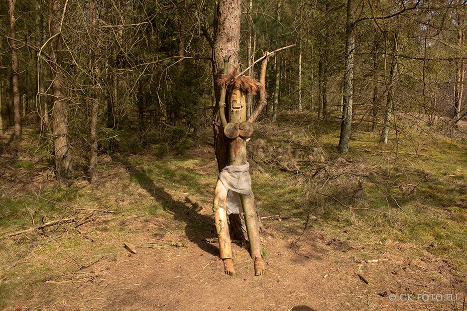 Die Waldfrau